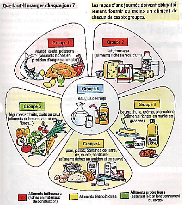 Beauty Food Bible: Ce Quil Faut Manger Chaque Jour